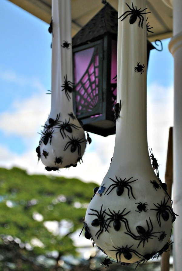 creepy spider sacs