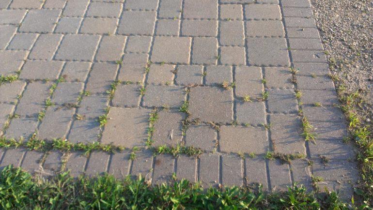 paver-maintenance